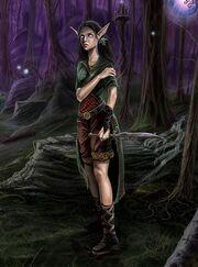 Kalimdor High Elf
