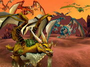 Dragonswarm
