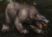 Rabid Thistle Bear