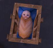 Humanbaby