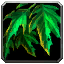 Inv misc plant 02.png