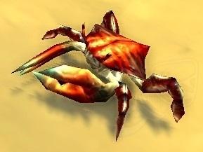 Image of Spirebound Crab