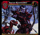 TCG Heroes of Azeroth/14
