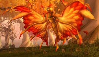 Crazed Dragonhawk
