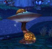 Burstcap Mushroom