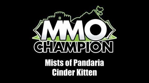 Cinder Kitten Pet