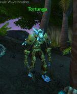 (Echo Isles) Tortunga 2