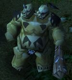 Ogre Warrior