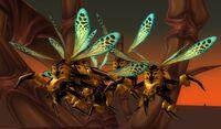 Hive'Zora Wasp