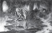 Druidsofthefang
