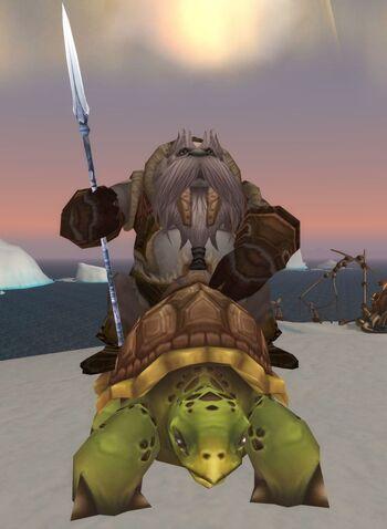 Unu'pe Turtle Rider