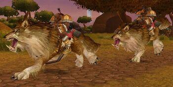 Garadar Wolf Rider
