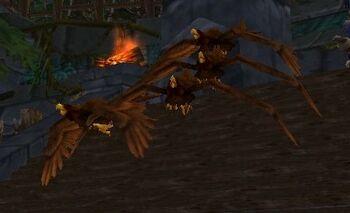 Amani Eagle
