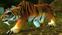 Stranglethorn Tigress