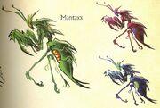 Mantaxx