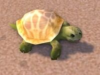 Emerald Turtle
