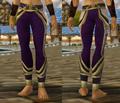 Battlecast Pants.PNG