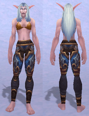 Velen's Leggings of Conquest, Snow Background, NE Female