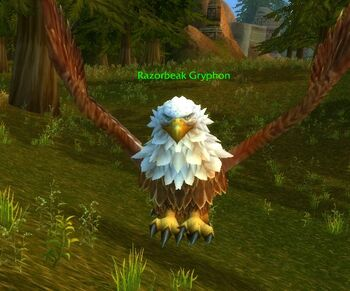 Razorbeak Gryphon