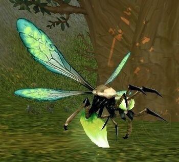 Image of Darkmoon Glowfly