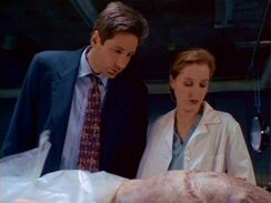 Fox Mulder and Dana Scully examine the Wiry Man's corpse