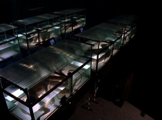 File:Zeus Storage tanks.jpg