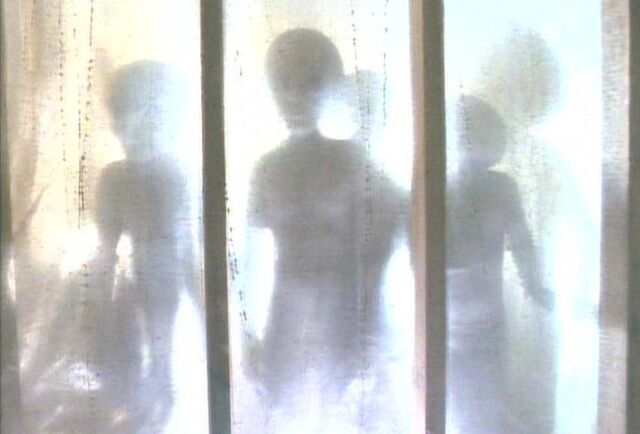 File:Grey Aliens Abduction Duane Barry Rectangle.jpg