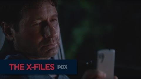 "THE X-FILES Welcome To South Carolina from ""My Struggle II"""