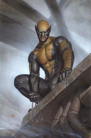 File:Wolverine Vol 6 2 Granov Variant Textless.jpg
