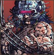 Wolverine-20060502054703872