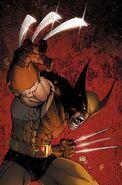 1058843-best superhero costumes in the world wolverine xme