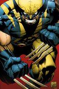 Wolverine36b