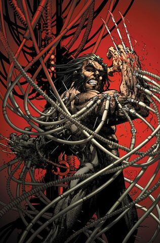 File:Wolverine weapon x 2345678.jpg