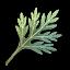 Bude Mugwort icon.png