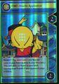 TCG - OMI-Xiaolin Apprentice.jpg