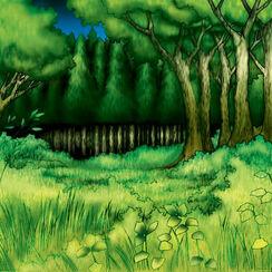 Forest-TF04-JP-VG.jpg