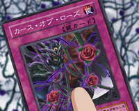 RoseCurse-JP-Anime-5D