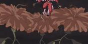 NeoSpacianAirHummingbird-JP-Anime-GX-Effect-2