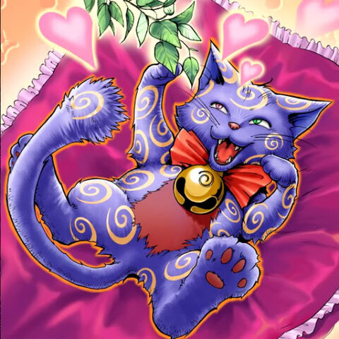 File:CatnippedKitty-TF04-JP-VG.jpg