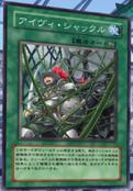 IvyShackles-JP-Anime-5D