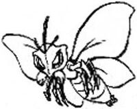 OrchidMoth-JP-Manga-5D-NC