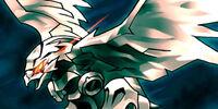 Cyber Falco
