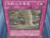 WildTornado-JP-Anime-5D