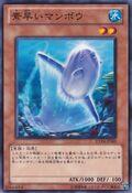 NimbleSunfish-EXP4-JP-C