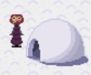 Igloo(Snow World)