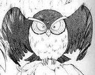 Owl (manga)