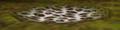 Thumbnail for version as of 00:29, November 14, 2009