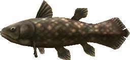 File:Majora's Mask 3D Fish Ancient Fish (Swamp Fishing Hole).png