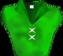 Kokiri Tunic