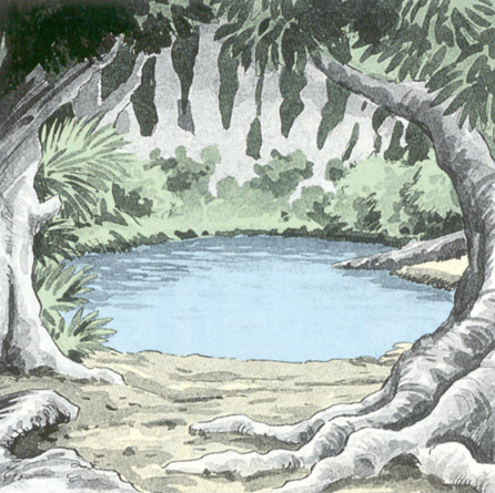 File:Fairy Pond Artwork (Link's Awakening).png